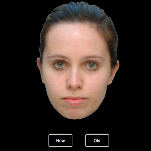 Recognise that face? Testing your memory